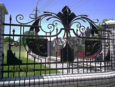 Wrought iron fence of the house property