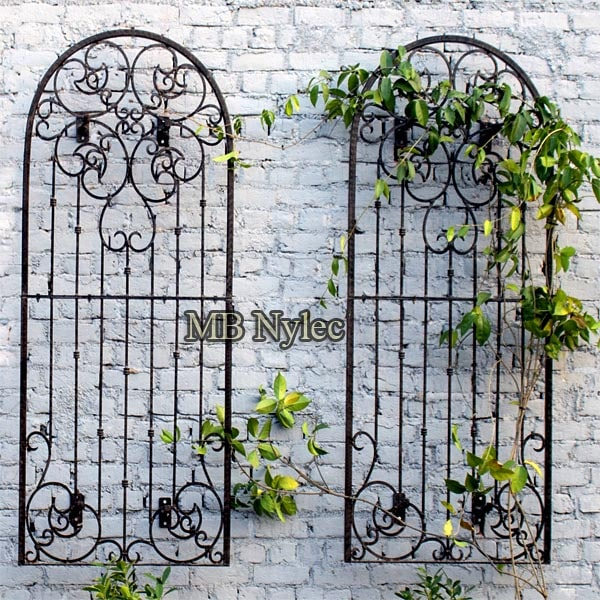Wrought iron trusses for garden creepers